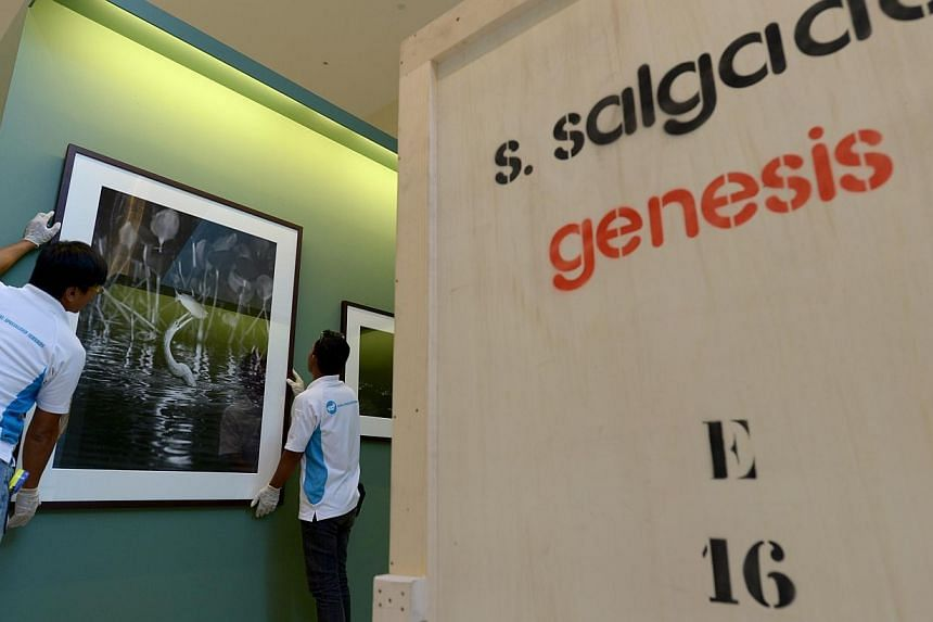 Renowned Brazilian photographer Sebastiao Salgado took 12 years to complete Genesis, a showcase of 245 images. Renowned photographer Sebastiao Salgado went where few men have gone before to capture the remote beauty of nature. -- ST PHOTO: NG SO
