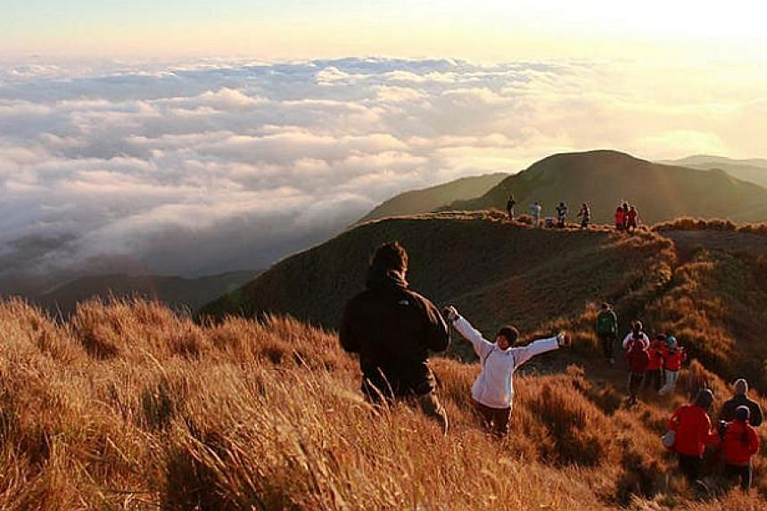 The Trek For Hope team descending Mount Pulag, the second highest point in the Philippines. --PHOTO: SIMON CHAN