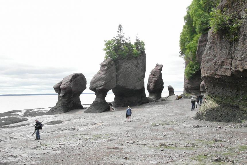 Parks Canada says it will offer wi-fi in some of its spectacular outposts, from the Bay of Fundy (above) on the Atlantic to the Rockies to Baffin island in the Arctic.-- FILE PHOTO: LUVENA SEET
