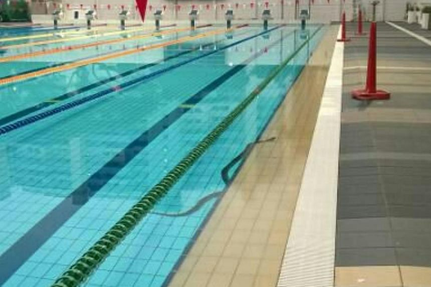 A reticulated python was found in a pool at Toa Payoh swimming complex on Tuesday morning. Fortunately, the pool was closed for its scheduled half-day weekly maintenance.-- PHOTO: ANIMAL CONCERNS RESEARCH AND EDUCATION SOCIETY (ACRES)