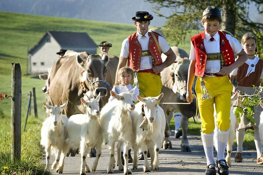 Swiss farmers leading their cows. Switzerland, along with Norway, have been ranked the world's most expensive economies by the World Bank. -- FILE PHOTO: SWITZERLAND TOURISM
