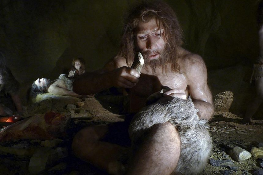 An exhibit shows the life of a Neanderthal family in a cave in the new Neanderthal Museum in the northern town of Krapina on Feb 25, 2010. -- FILE PHOTO: REUTERS