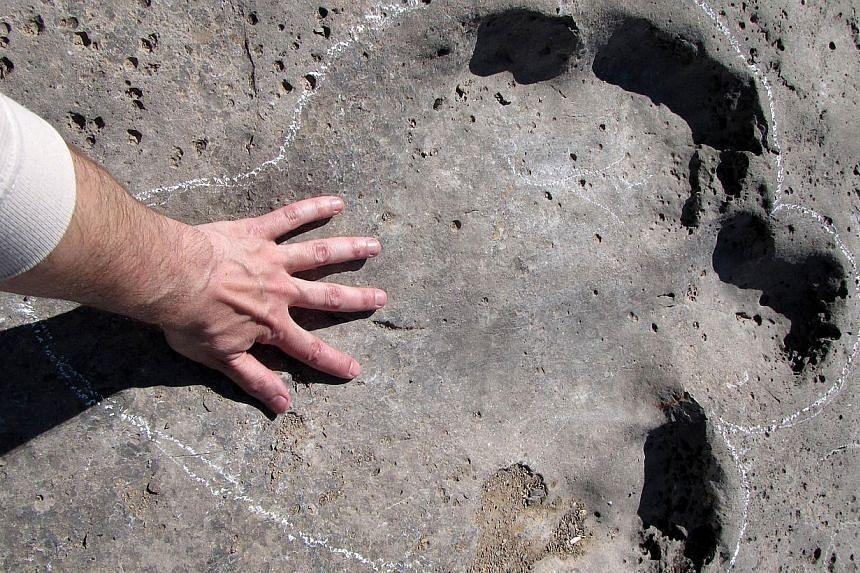 A man touches his hand on one of the fossilised dinosaur tracks on Turkmenistan's Plateau of the Dinosaurs in the country's eastern corner on the border with Afghanistan and Uzbekistan, on April 15, 2014. -- PHOTO: AFP
