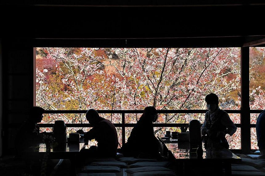 Day-trippers to Japan's first permanent capital, Nara, having a break at a restaurant surrounded by sakura trees. Nara is home to many of Japan's important scenic and historical sites. -- ST PHOTO: DESMOND FOO