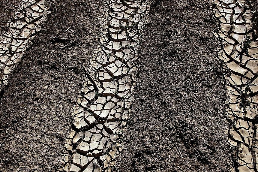 Dried and cracked earth is visible on an unplanted field at a farm near Mendota, Californiaon April 29, 2014.The White House called Tuesday for urgent action to combat climate change, saying in a major report that human-caused warming is