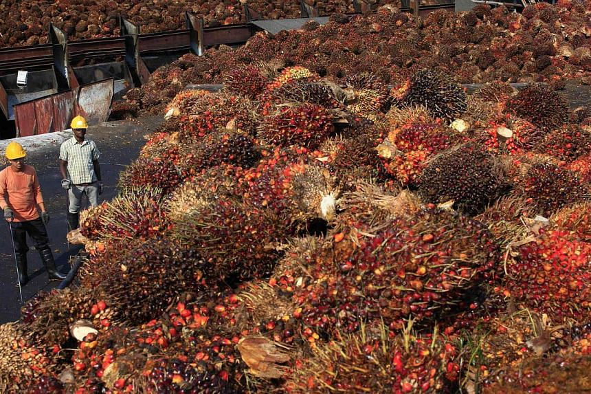 Workers stand near palm oil fruits inside a palm oil factory in Sepang, outside Kuala Lumpur, on Feb 18, 2014. -- FILE PHOTO: REUTERS