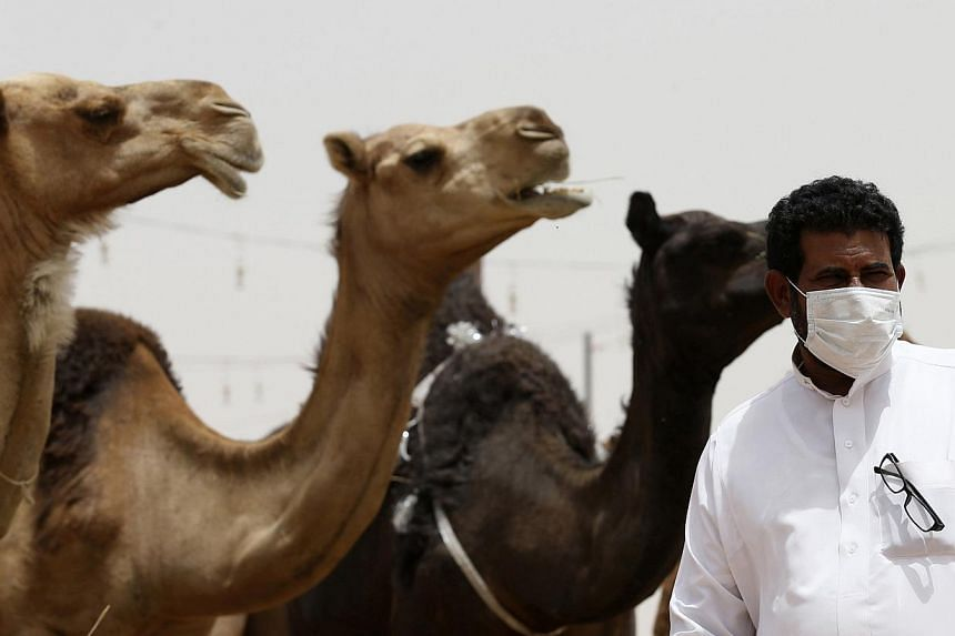 A man wearing a mask looks on as he stands in front of camels at a camel market in the village of al-Thamama near Riyadh on May 11, 2014. -- PHOTO: REUTERS