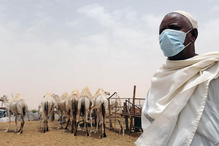 An Indian worker wears a mouth and nose mask as he works near camels at his farm outside Riyadh on May 12, 2014. -- FILE PHOTO: AFP