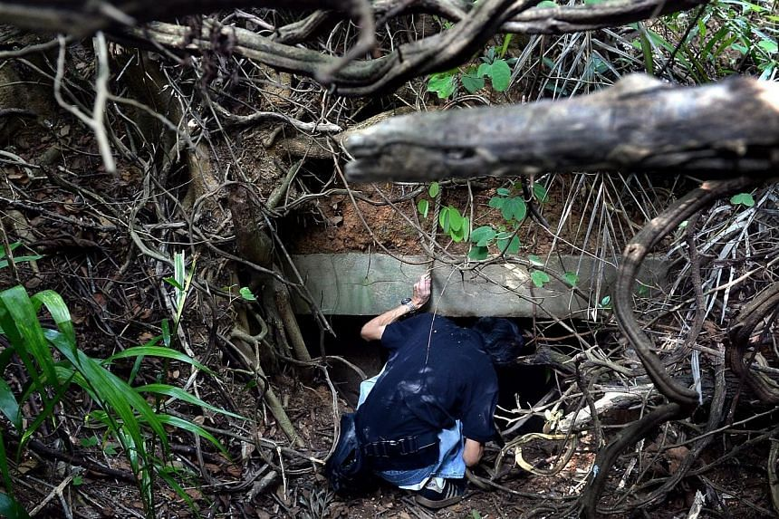 One of the tunnels in a jungle in Marsiling, which were rebuilt by the Japanese when they were abandoned by British forces after Singapore was invaded by the Japanese forces during World War II.History buffs can now crawl through the Marsiling
