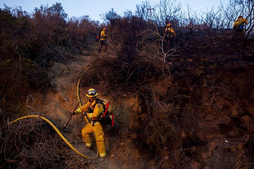 Fire crew put out smouldering embers from the Cocos Fire in San Marcos, California on May 15, 2014. California firefighters were battling wind-whipped wildfires on Friday, as some 125,000 people fled their homes in the San Diego area and police arres