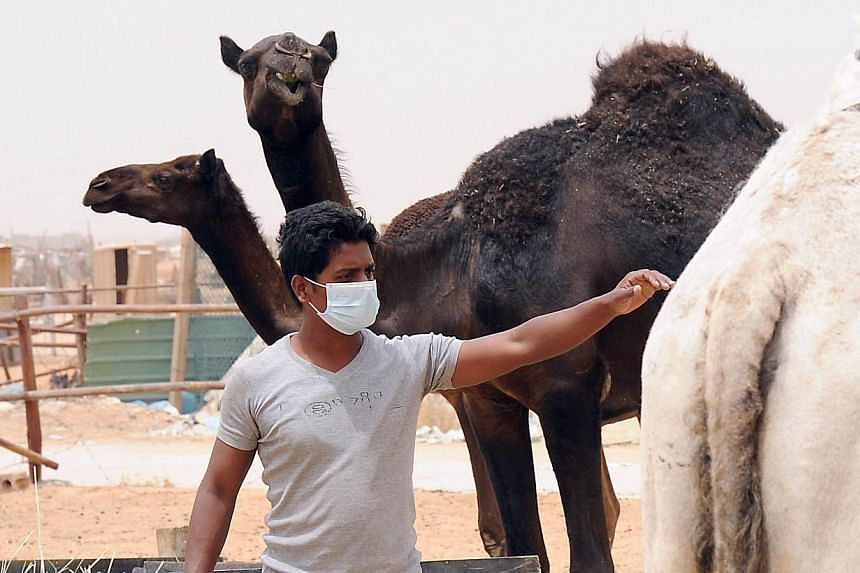 An Indian worker wears a mask at his Saudi employer's farm outside Riyadh. The Mers virus has been circulating for two years among humans but has not mutated into a pandemic form yet. Still, the sharing of data is important in the fight to stop the v