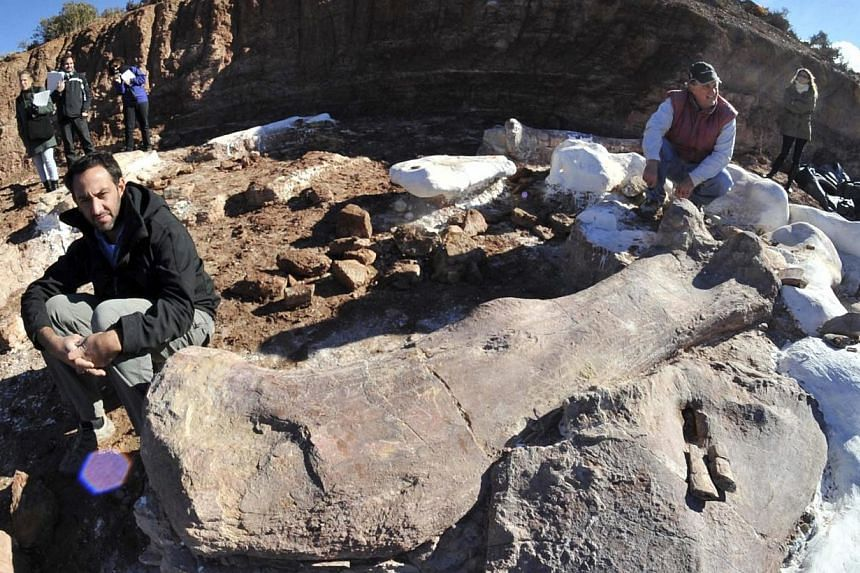 Paleontologists Jose Luis Carballido (left) and Ruben Cuneo pose next to the bones of a dinosaur at a farm in La Flecha, west of the Argentina's Patagonian city of Trelew, May 16, 2014.Ever since the first dinosaur fossil was found in 1676, man