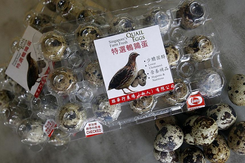 Quail eggs at Uncle William's shop at Farmart on May 16, 2014. -- ST FILE PHOTO: KEVIN LIM