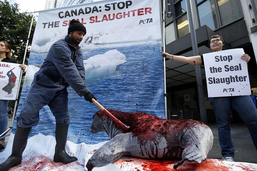 Demonstrators stage a mock clubbing of a seal during a Peta protest against harp seal hunting in Canada outside the Canadian consulate in Los Angeles, California on March 31, 2014.The WTO on Thursday upheld a European Union ban on imports of se