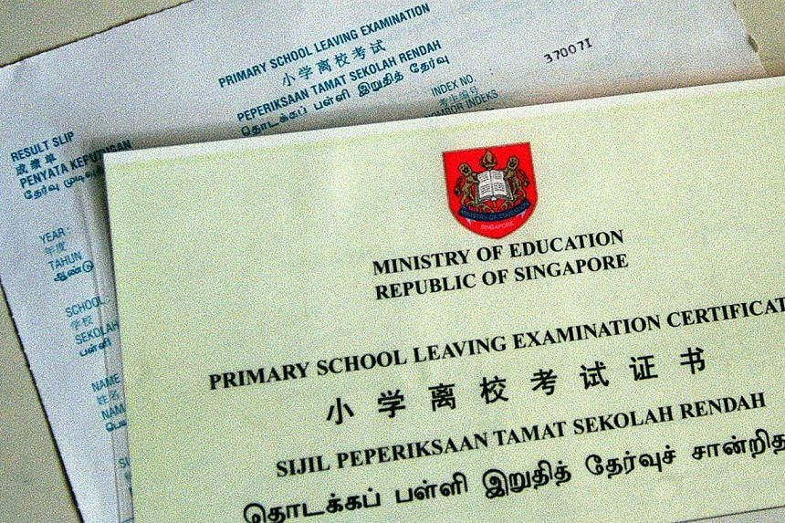 """The Primary School Leaving Examination (PSLE) will continue to be an """"important milestone examination"""" in the education system here, Education Minister Heng Swee Keat said on Monday. -- FILE PHOTO: ST"""