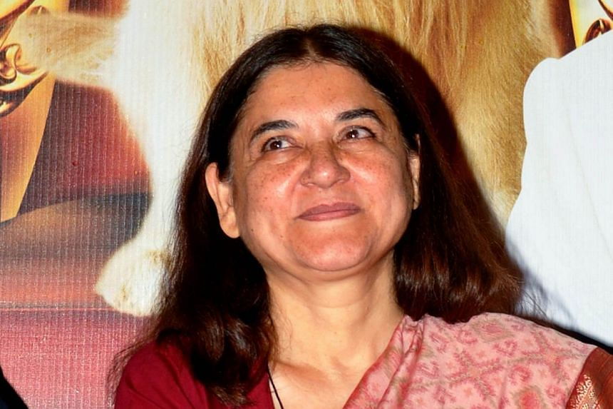 Indian politician and activist Maneka Gandhi attends a promotional event for the forthcoming Hindi film, It's Entertainment! in Mumbai on May 19, 2014. Mrs Gandhi returned to political power on Monday when she was sworn in as a member of India's new