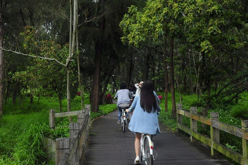 """Explore Taitung Forest Park (above) on a bike or zip along the city's 21km-long """"bikeway"""". -- PHOTO: PEARL LIU"""