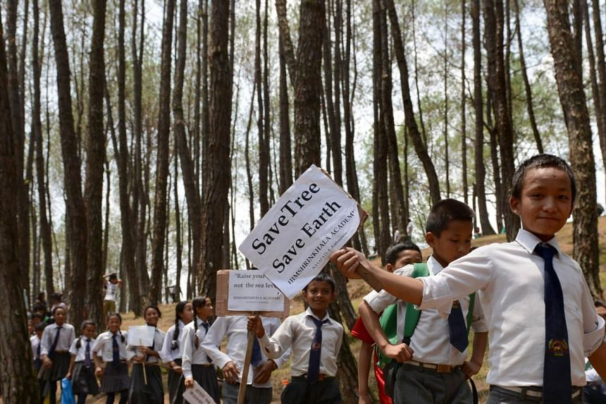 Nepalese school children hold placards on their arrival to participate in a tree-hugging event, in a bid to set a new world record for the largest tree hug as they celebrate World Environment Day in the forest of Gokarna village, on the outskirts of