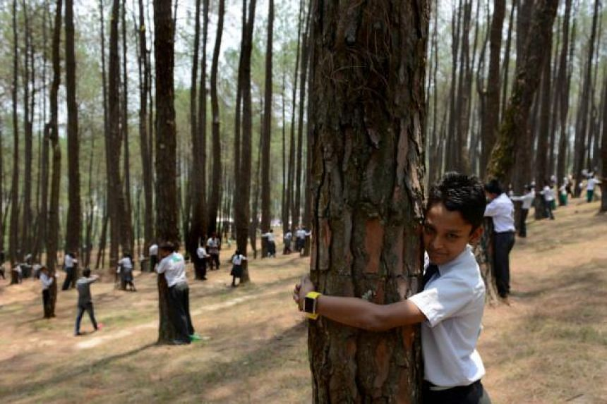 Nepalese school children hug trees in a bid to set a new world record for the largest tree hug as they celebrate World Environment Day in the forest of Gokarna village, on the outskirts of Kathmandu on June 5, 2014. -- PHOTO: AFP