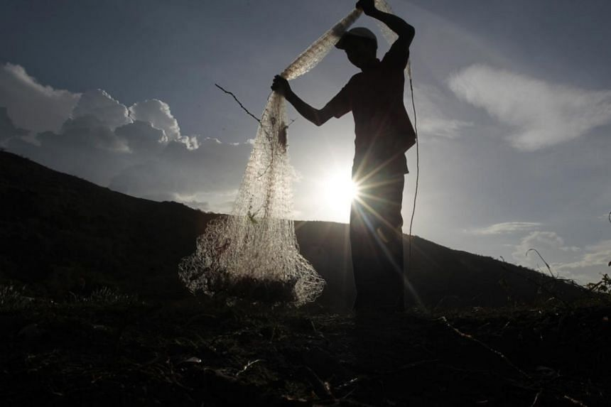 A boy catches fish in Xolotlan Lake in Managua on June 3, 2014. The lake, with a surface area of about 1,000 sq km, is polluted as it is where sewage from Managua has been dumped since 1920, according to local media. --PHOTO: REUTERS