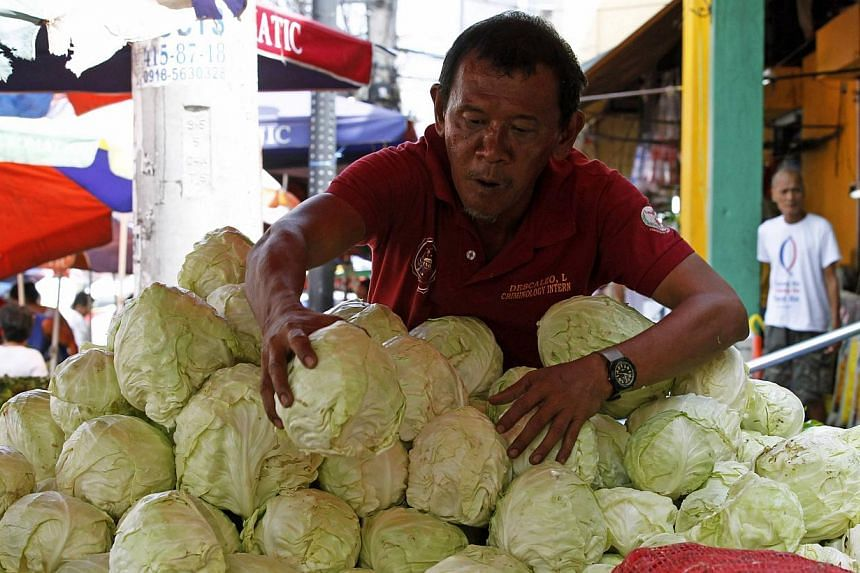 A vendor arranges cabbages at a market in Manila on May 6, 2014. -- PHOTO: REUTERS