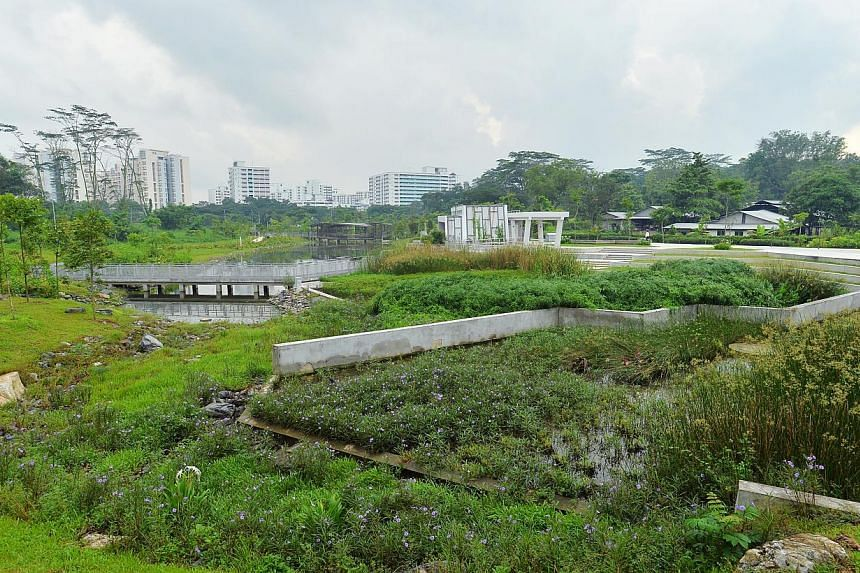 A freshwater swamp at the new Jurong Eco-Garden on June 4, 2014. -- ST PHOTO: LIM YAOHUI