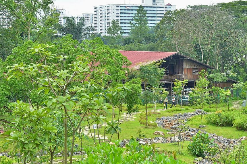 Thow Kwang Industry, (middle) which is home to one of the last surviving dragon kilns in Singapore and swales (bottom). -- ST PHOTO: LIM YAOHUI