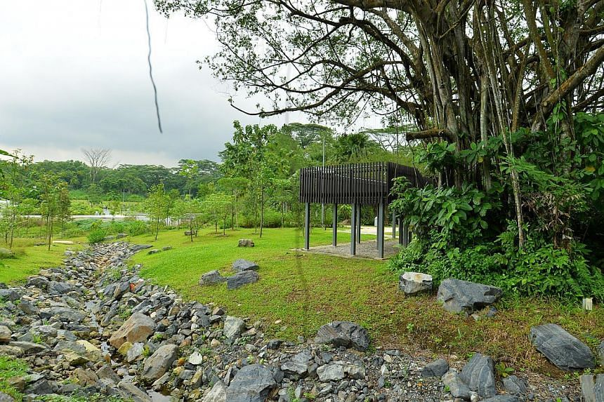 Swale (left) and Ficus Lookout (right) at the new Jurong Eco-Garden on June 4, 2014.-- ST PHOTO: LIM YAOHUI