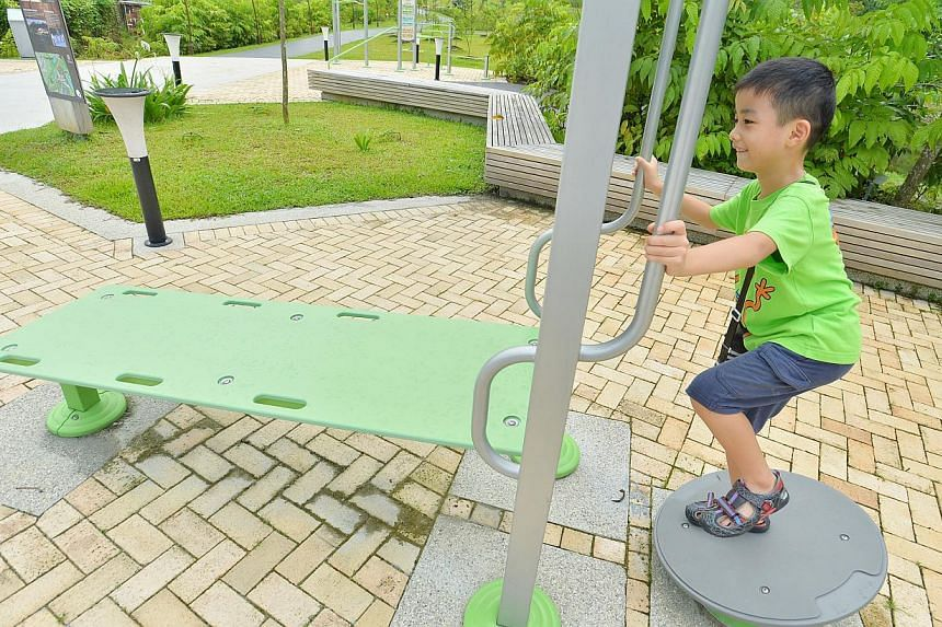 Mr Kaden Choo, 7, a primary one student, enjoys himself at the fitness corner at Jurong Eco-Garden on June 4, 2014.-- ST PHOTO: LIM YAOHUI