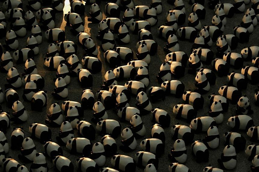 Papier-mache pandas, created by French artist Paulo Grangeon, are seen displayed at the arrival hall of the Hong Kong airport on June 9, 2014. -- PHOTO: REUTERS