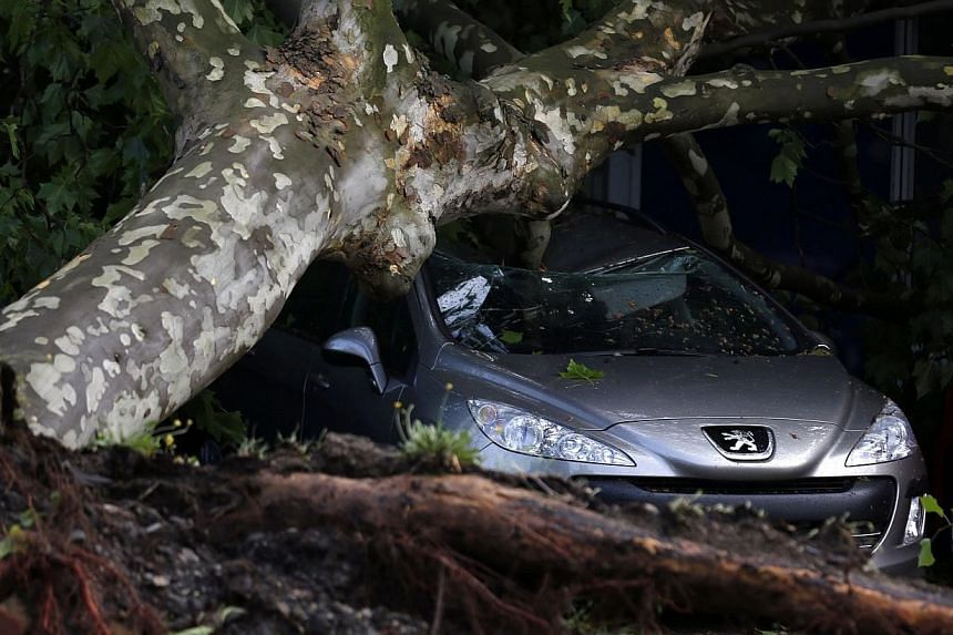 A car is pictured damaged by a fallen tree in a Gelsenkirchen dealership on June 10, 2014. -- PHOTO: REUTERS
