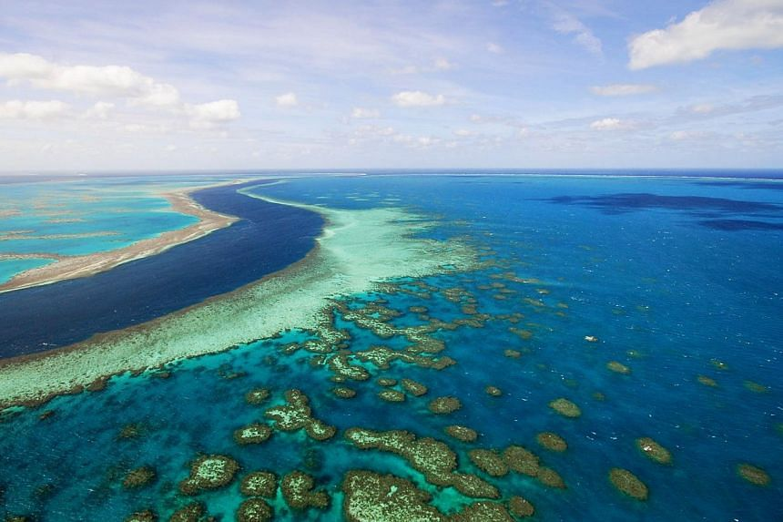 A handout photograph shows an island of the Great Barrier Reef in Whitsundays, Queensland, Australia, on Monday, on May 4, 2009. -- PHOTO: BLOOMBERG