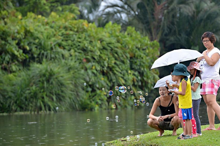 The children blowing soap bubbles at the Botanic Gardens. -- PHOTO: ST FILE