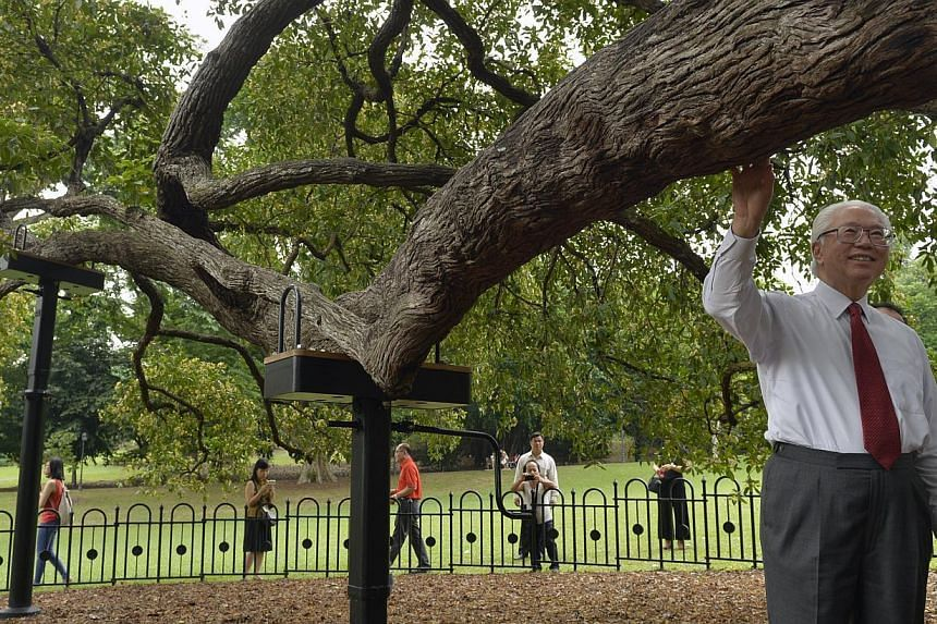 President Tony Tan Keng Yam admiring the iconic Tembusu tree with it's new support system meant to prop up it's huge branch during his Heritage Trees Trail tour at the Singapore Botanic Gardens. -- PHOTO: ST FILE