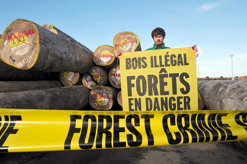 """A Greenpeace activist demonstrates while holding a banner reading """"Illegal timber, forests in danger"""" against the illegal importation of timber coming from Brazil and Congo on May 22, 2014 in front of a warehouse belonging to French sawmill Robert &a"""