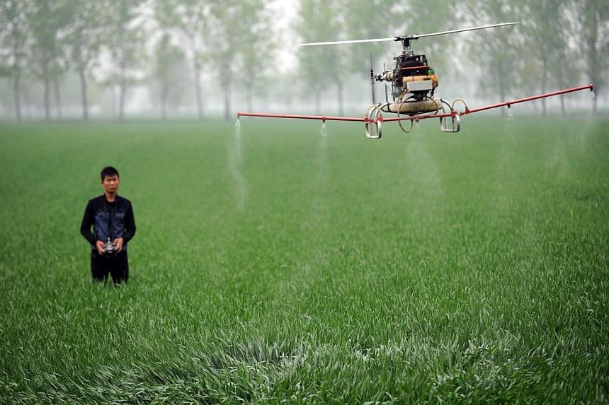 This picture taken on April 15, 2014 shows a man controlling a drone to spray pesticides on a farm in Bozhou, central China's Anhui province.A California study out on Monday found that pregnant women who lived near farms where pesticides are ap