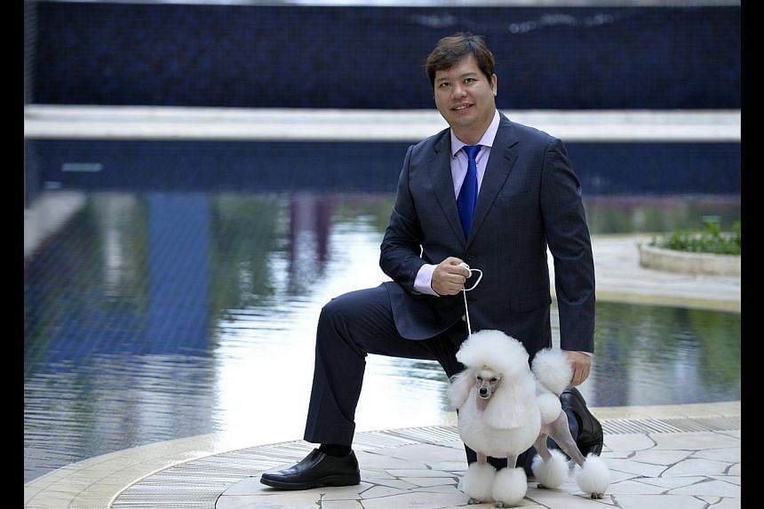 Mr Chua with his pet toy poodle Polar Bear, which is among the dozens of dogs he has owned in the past two decades.