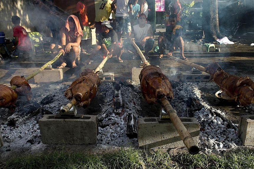 Pigs are roasted during a festival in Balayan, Batangas province, south of Manila on June 24, 2014, to celebrate the feast of St. John the Baptist. -- PHOTO: AFP