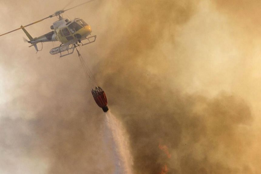A helicopter drops water on a wildfire in a forest at the Es Cubells in Sant Josep de Talaia, on the Spanish island of Ibiza on April 12, 2014.Around 600 people were evacuated from a village in Spain's Costa del Sol on Sunday as a wildfire th