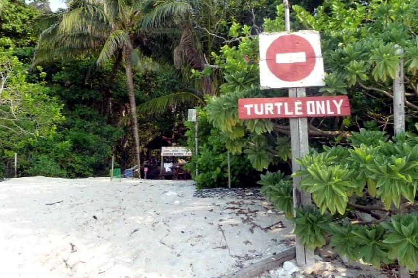Chagar Hutang, a remote beach on the northern end of Malaysia's Redang Island, was gazetted as a turtle sanctuary in 2005 by the state government of Terengganu. It is off-limits to all human visitors, except a small team of native staff, research ass