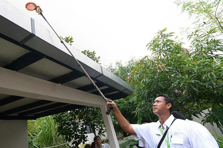 An NEA officer checking the roof of a house in Da Silva Lane for mosquito breeding habitats. The number of dengue cases is expected to continue rising as the weather becomes warmer.