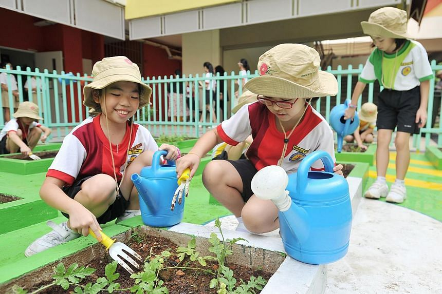 Yu Neng Primary 3 pupils Yeo Xiu Ping (above left) and Maybelle Myint (above right) tend their school's garden (left), which uses coffee compost as fertiliser and has small plots for different plant experiments.