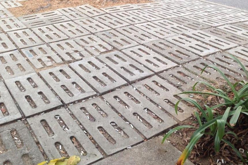 Hundreds of cigarette butts tossed by the roadside accumulate in between tiles. -- PHOTO: ALVINI CHANA