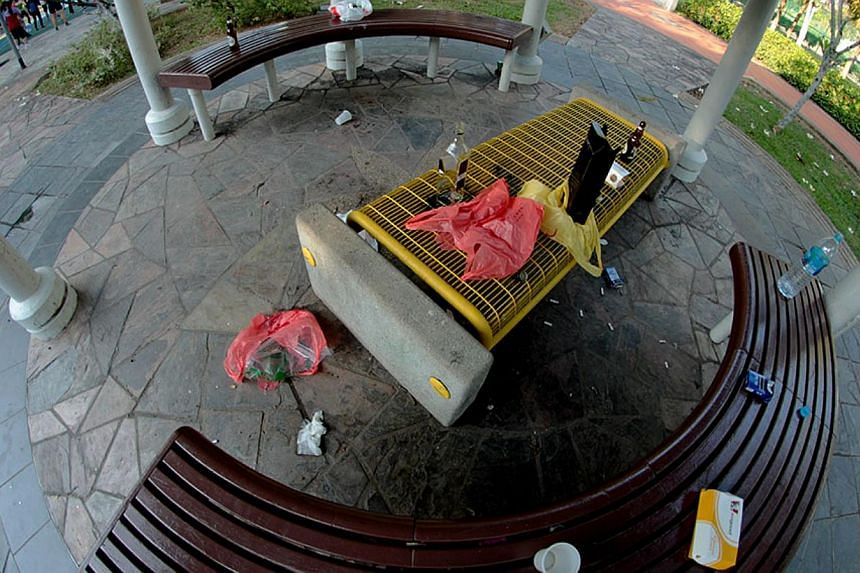 A park in Woodlands left sullied by irresponsible picnickers. -- PHOTO: DAVID HONG
