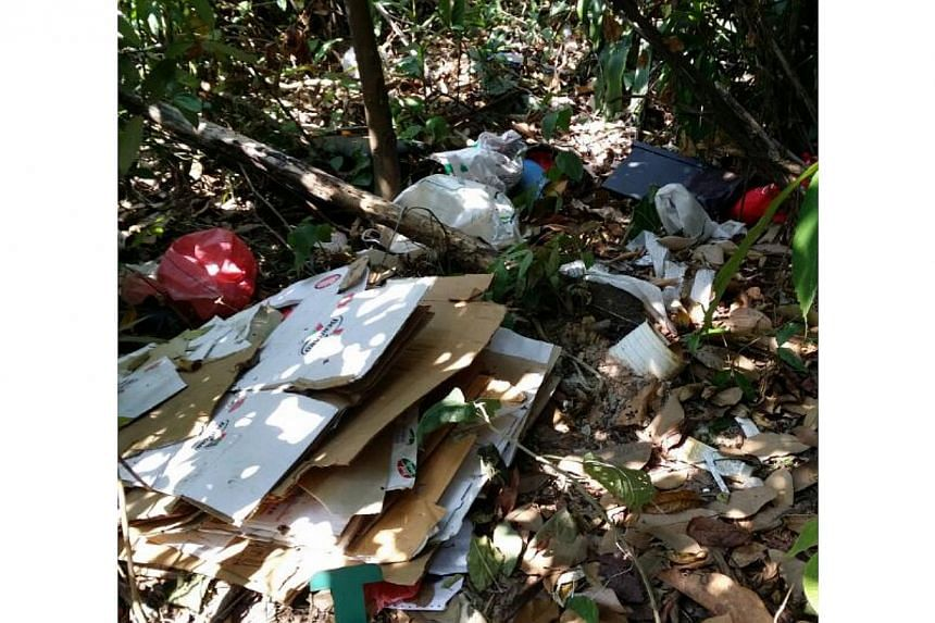A pile of rubbish left alongside Toh Tuck Road. -- PHOTO: VICKY CHONG