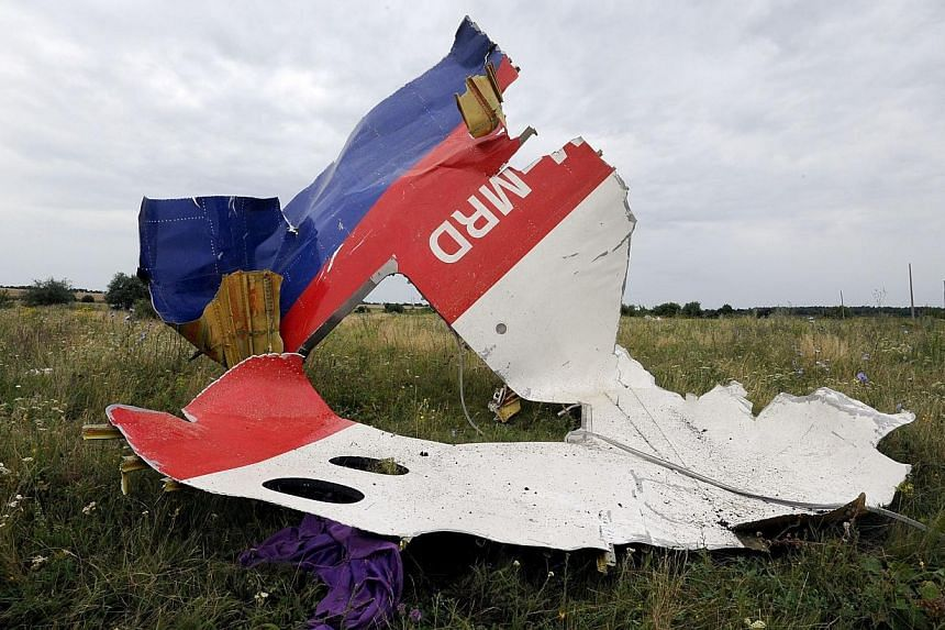 A piece of wreckage of the Malaysia Airlines flight MH17 is pictured on July 18, 2014 in Shaktarsk, the day after it crashed. The International Civil Aviation Organisation (ICAO) on Friday, July 18, 2014, denied it had closed an air route over e