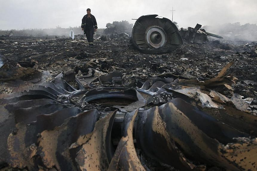 An emergencies ministry member walks at a site of a Malaysia Airlines Boeing 777 plane crash near the settlement of Grabovo in the Donetsk region on July 17, 2014. -- PHOTO: REUTERS