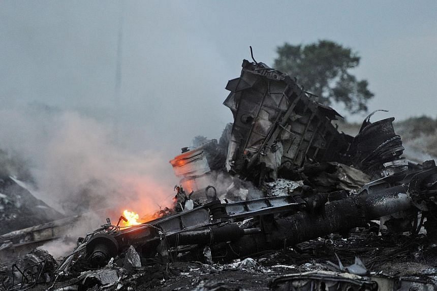A picture taken on July 17, 2014 shows flames amongst the wreckages of the Malaysian airliner carrying 298 people from Amsterdam to Kuala Lumpur after it crashed, near the town of Shaktarsk, in rebel-held east Ukraine. -- PHOTO: AFP