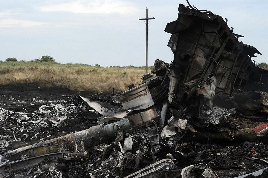 A picture taken on July 18, 2014 shows the wreckage of the Malaysia Airlines jet carrying 298 people from Amsterdam to Kuala Lumpur a day after it crashed, near the town of Shaktarsk, in rebel-held east Ukraine.-- PHOTO: AFP