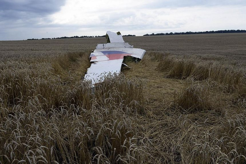 A piece of debris lies in a wheat field at the site of the crash of a Malaysia Airlines plane carrying 298 people from Amsterdam to Kuala Lumpur in Grabove, in rebel-held east Ukraine on July 19, 2014.Malaysia Airlines is appealing to the famil
